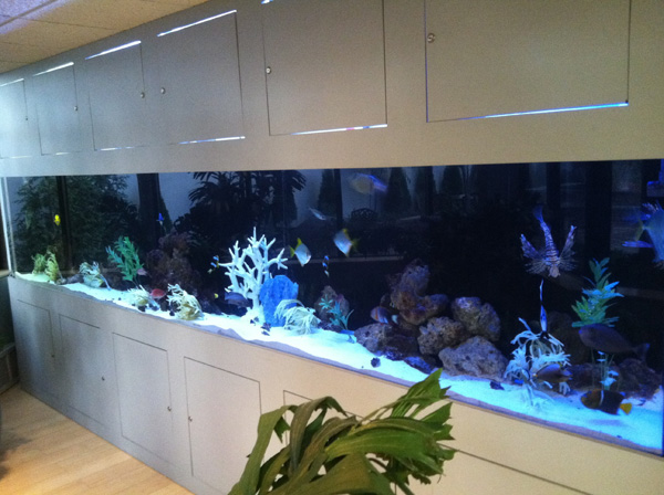 Workmen's Circle Aquarium