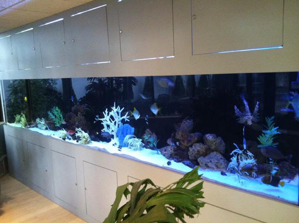 Workmen's Circle Aquarium